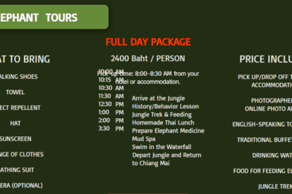 Full Day Package