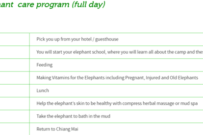 Ran-tong Elephant care program (full day)