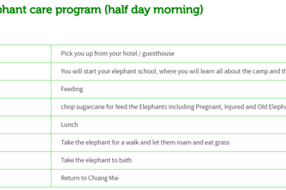 Ran-tong Elephant care program (half day morning)