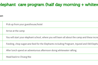 Rantong elephant care program (half day morning + whitewater rafting)