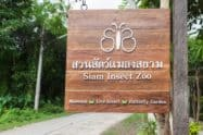 Siam Insect Zoo