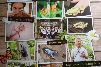 siam insect zoo 01