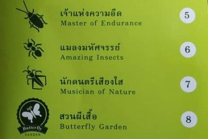 siam insect zoo 02