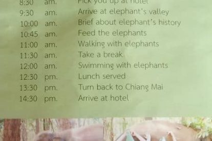 chiang mai elephant care project 01