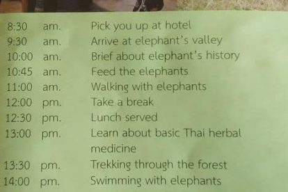 chiang mai elephant care project 02