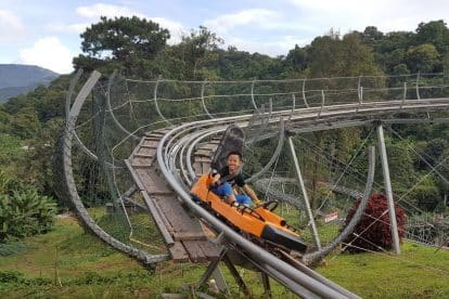 Pongyang Zipline and Jungle Coaster