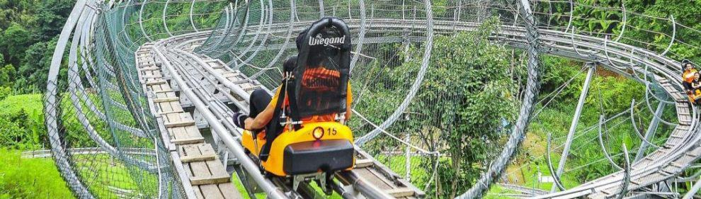 Pongyang Zipline and Jungle Coaster 5
